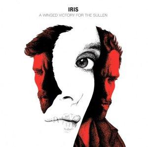11-iris